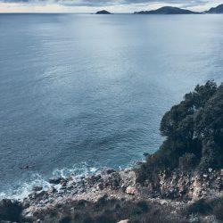 La Groppina nei pressi di Tellaro, vista dall'alto. Pini marittimi e mare sullo sfondo. Location Scout Italia - duzimage