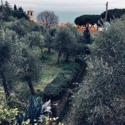 Tellaro vista dall'alto nei pressi del cimitero - Location Scouting Italia - duzimage