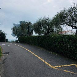 Stada sottostante il cimitero di Tellaro - Location Scouting Italia - duzimage