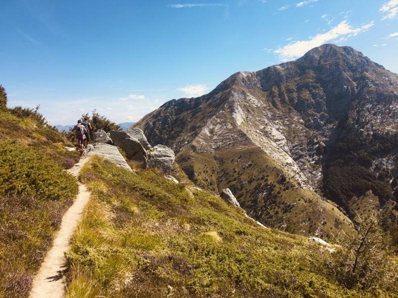 sentiero verso vetta Pizzo d'Uccello con sfondo Pisanino - Alpi Apuane